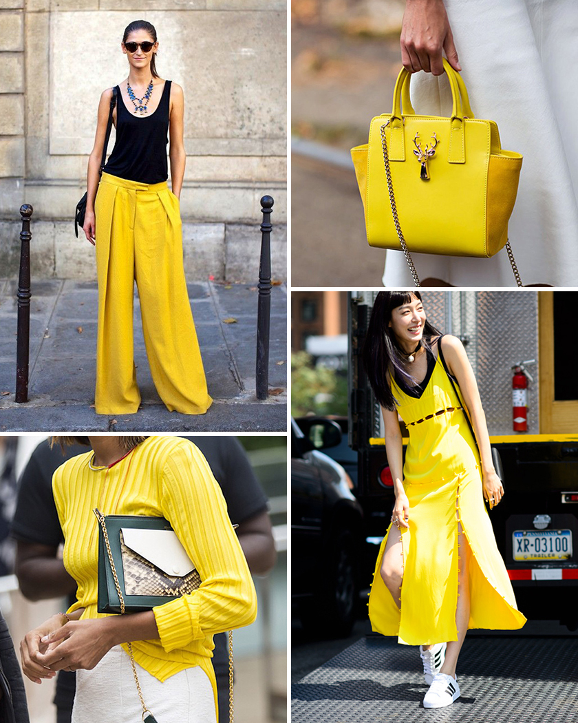 yellow_coll1