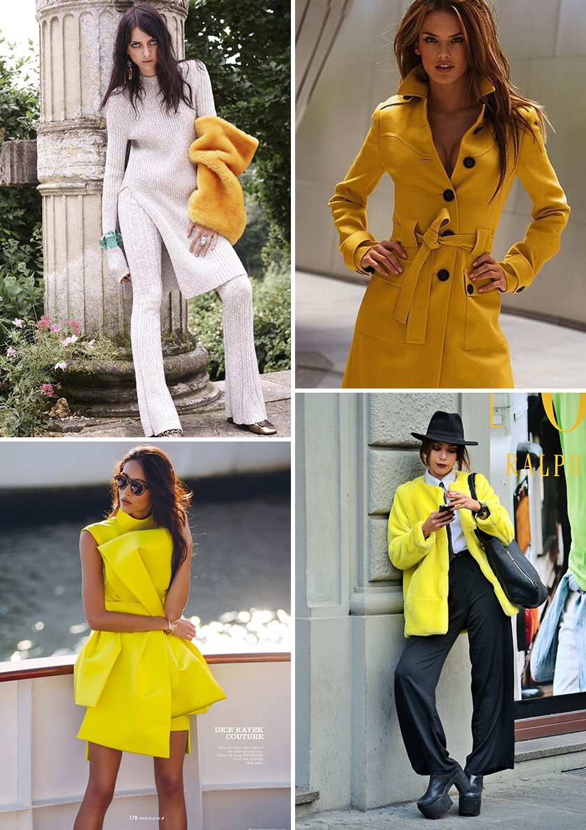 yellow_coll10