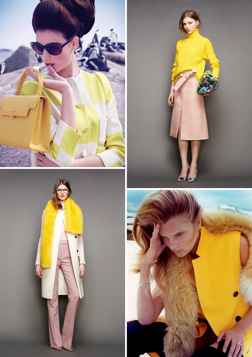 yellow_coll4